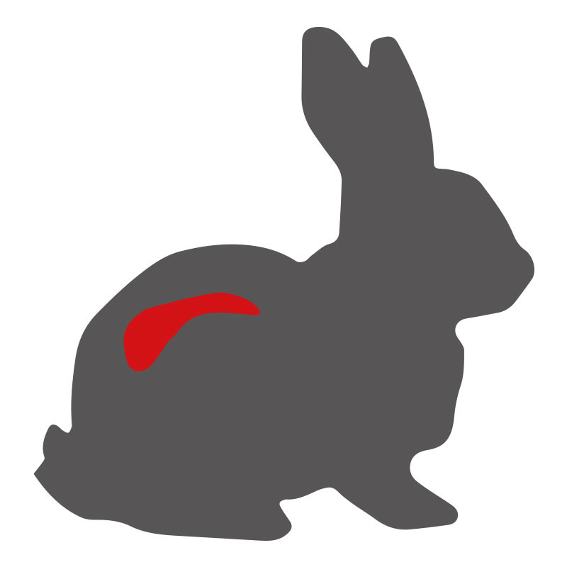 Wo liegt das Kaninchenrückenfilet?