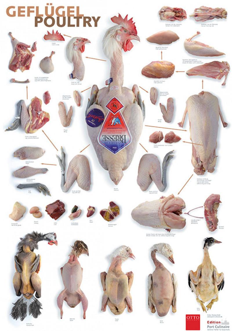 """Poster """"Gutes Fleisch"""" Geflügel"""