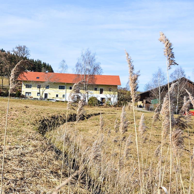 Das STOI auf dem idyllischen Hof von Ludwig Maurer in Bayern