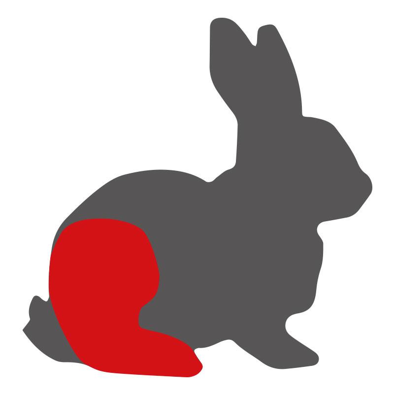 Wo liegt die Kaninchenkeule?