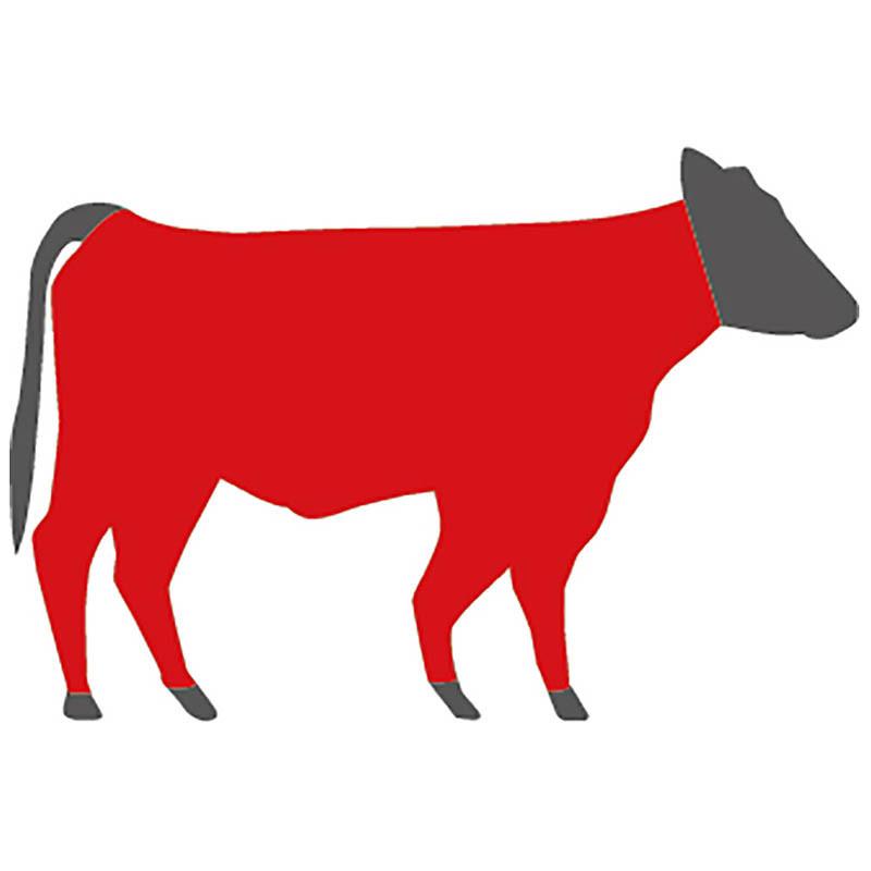Woher stammt das Hackfleisch beim US Black Angus Beef?