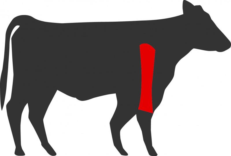 Wo liegt das Morgan Ranch US Beef Top Blade Roast beim Rind?