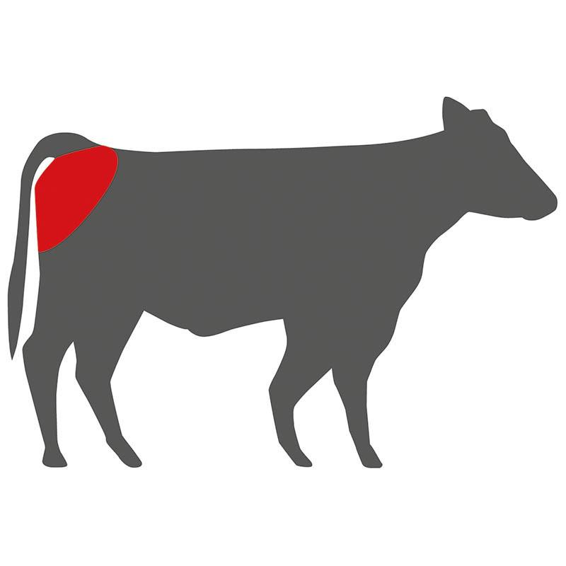 Wo liegt das Top Butt Cap beim Rind?
