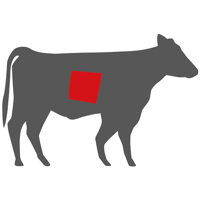 Wo liegt die flache Rippe beim Rind?