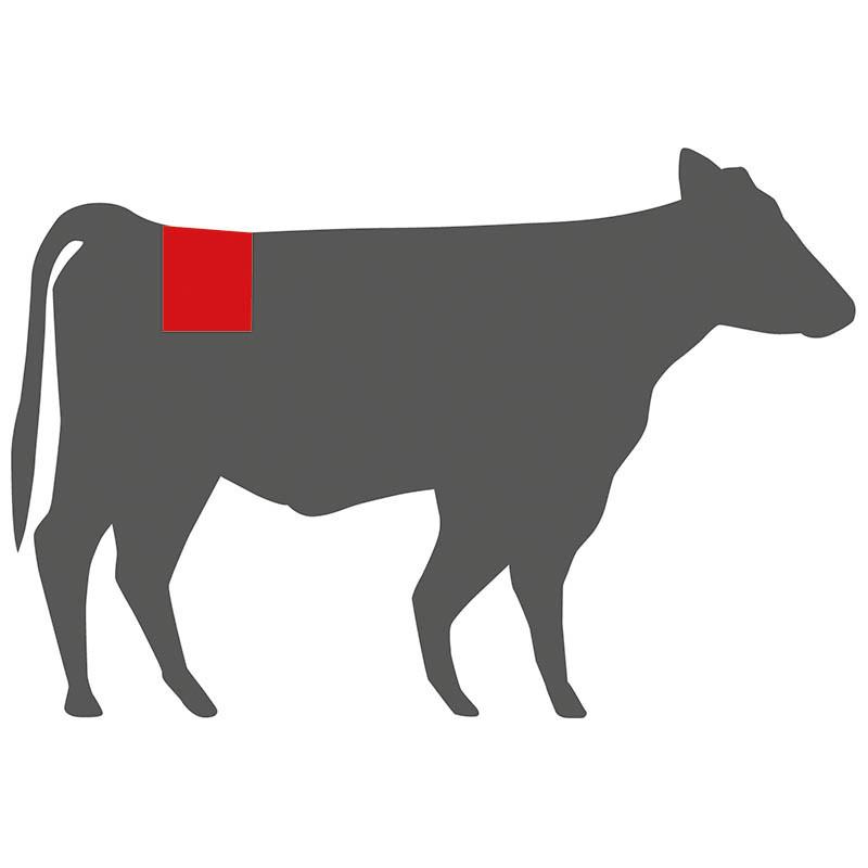 Wo liegt das Porterhouse Steak beim Rind?