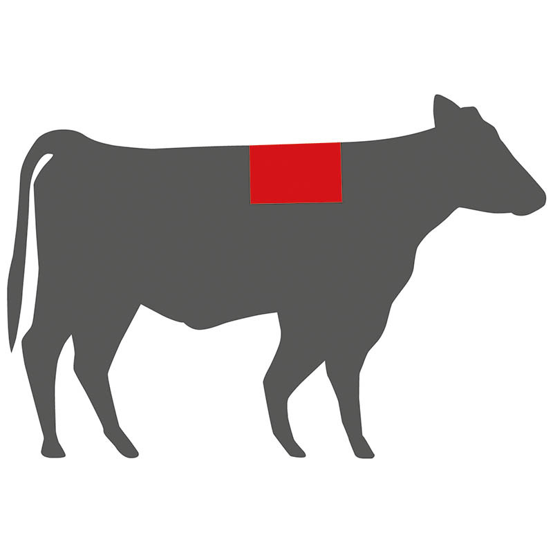 Wo liegt das Ribeye Steak beim Rind?