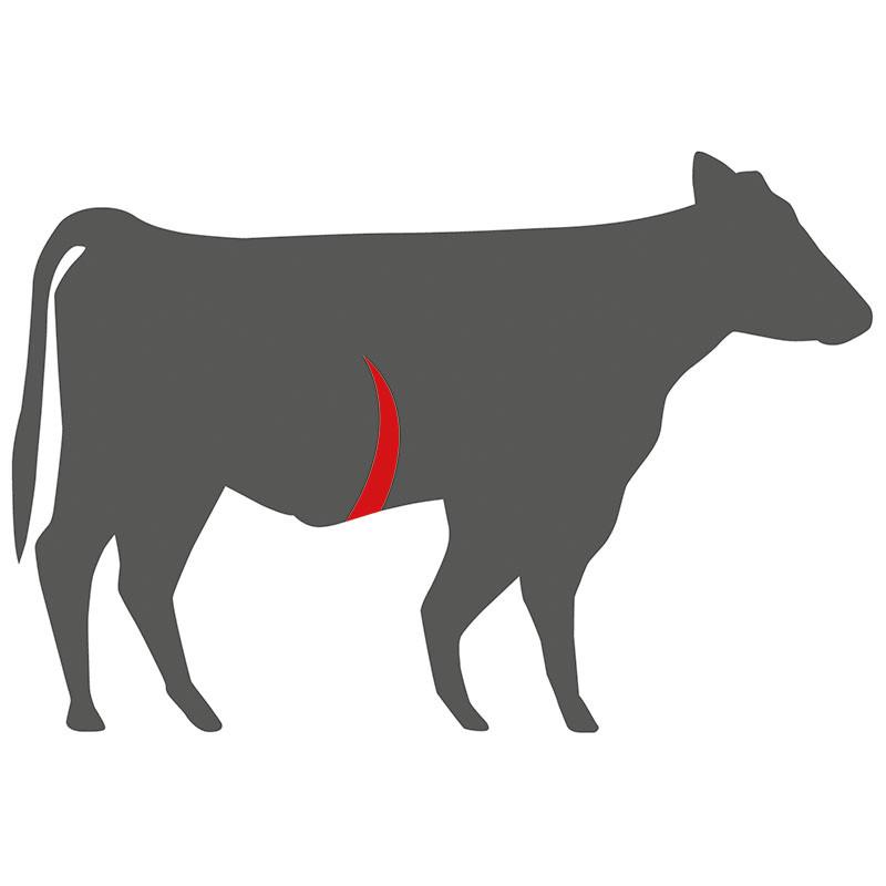 Wo liegt das Skirt Steak beim Rind?