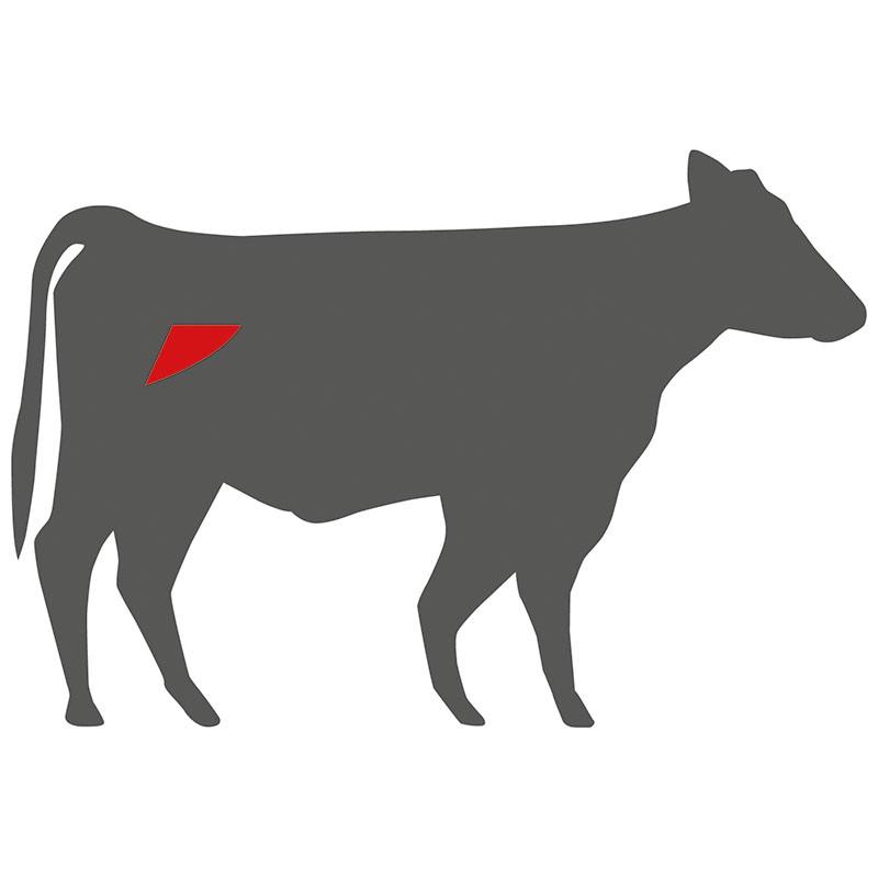 Wo liegt das Bürgermeisterstück beim Rind?
