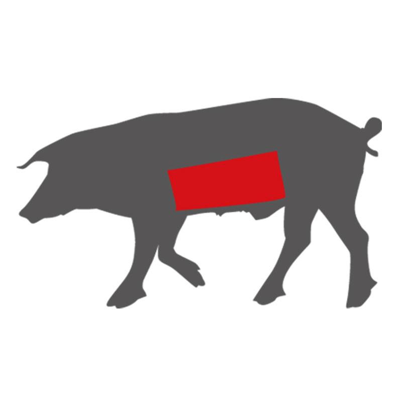 Hier liegt der Schweinebauch beim LiVar Schwein