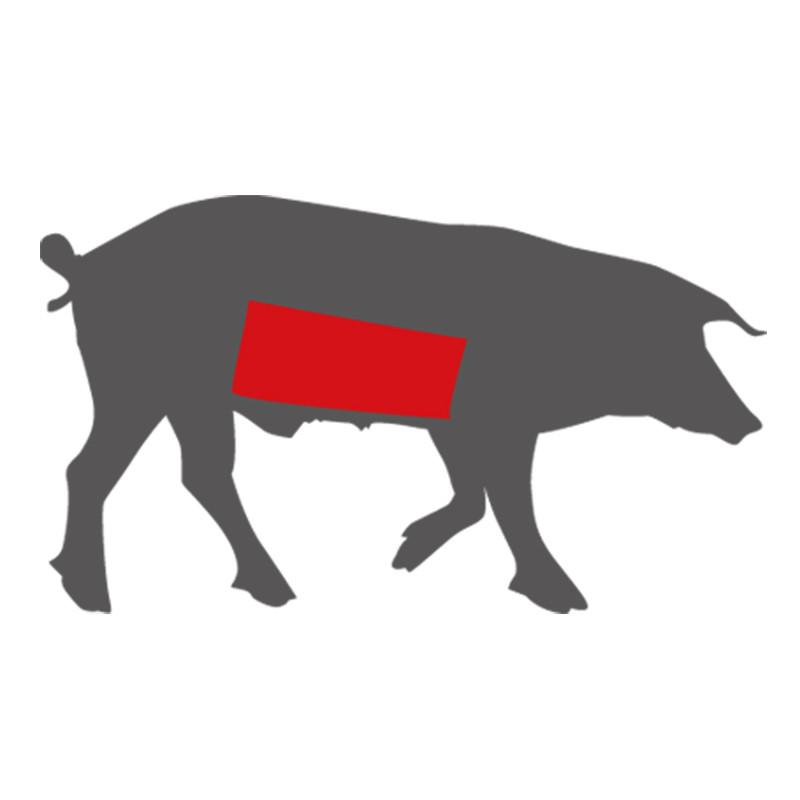 Wo liegt der Bauch des Mangalitza Schweins?