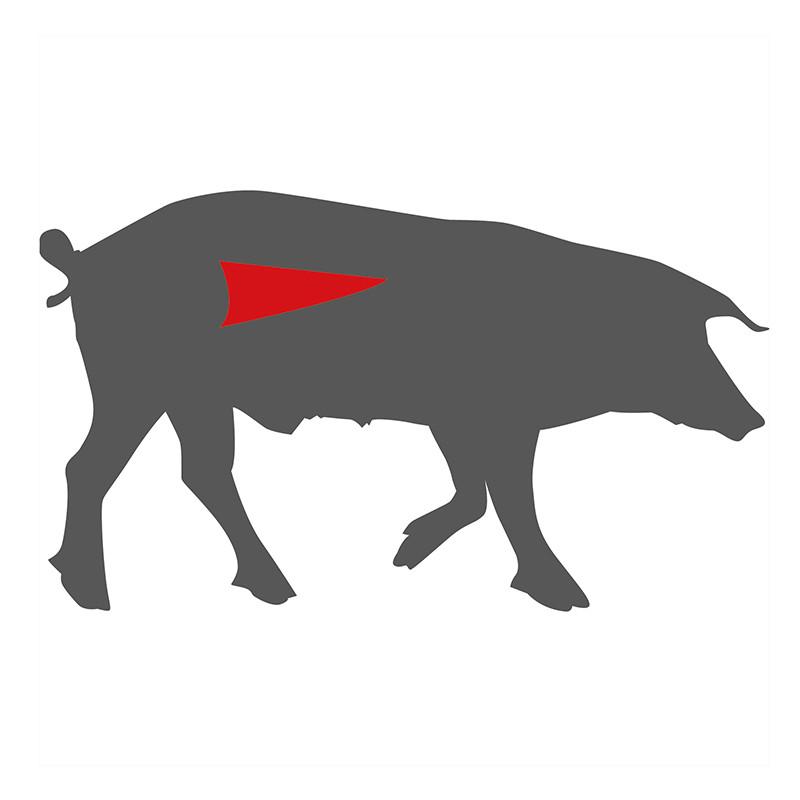 Hier liegt das Filet beim Schwein