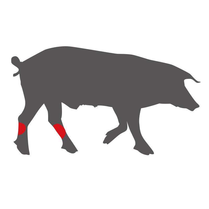 Wo liegen die Schweinshaxen?
