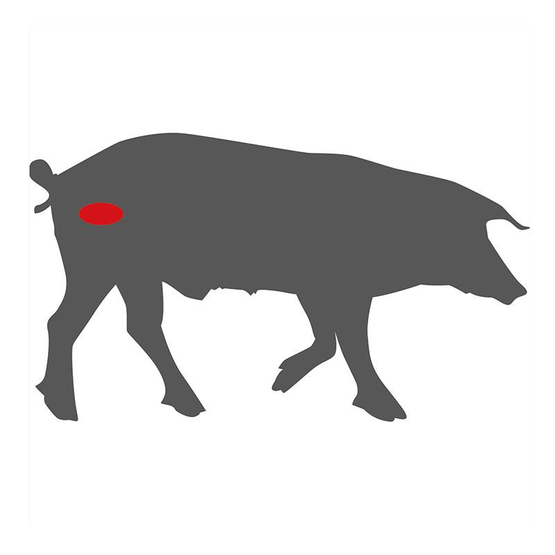 Wo liegt das Kachelfleisch beim Schwein?