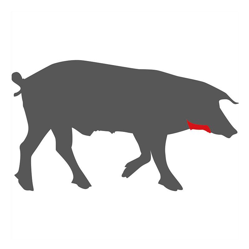 Wo liegt die Papada beim Schwein?