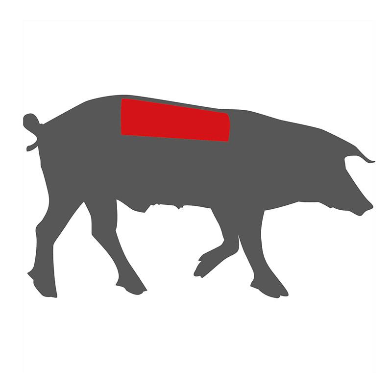 Hier liegt der Schweinelachsrücken