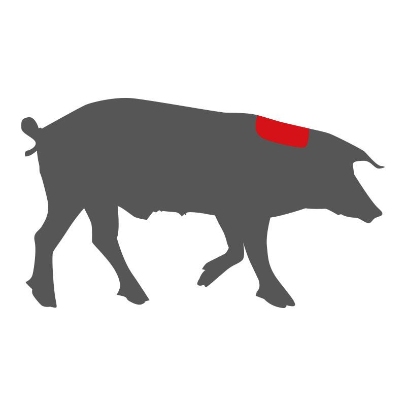 Wo liegt der Nacken beim Mangalitza Schwein?