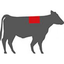 Ribeye Steak Bone in