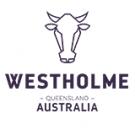 Westholme - familiengeführte Zuchtbetriebe