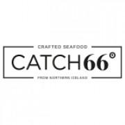 CATCH66°